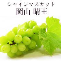 【WANG 蔬果】日本岡山縣晴王麝香葡萄(1房_700g/房)