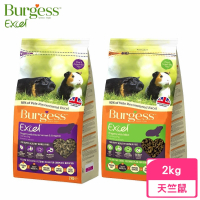 【Burgess伯爵】高機能鼠飼料-天竺鼠《新鮮薄荷|黑加侖&奧勒岡葉》2kg