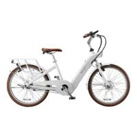 【BESV 達瑞】BESV 達瑞 CF1 LENA 電動輔助自行車(智慧動能自行車/鋰電池電動輔助自行車)