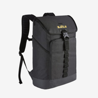 NIKE LEBRON MAX AIR AMBASSADOR 大容量  休閒包 後背包 BA5447-011 加賀皮件